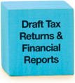 Draft Tax Returns & Financial Reports